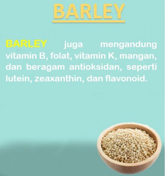 manfaat barley